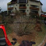 DSC_1595.thumb.jpg