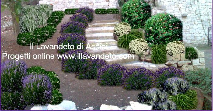 abbastanza Progetti giardini online gratis Progetti giardini privati  LL51