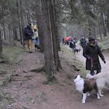 20140101 Neujahrsspaziergang im Waldnaabtal - DSC_9811.JPG