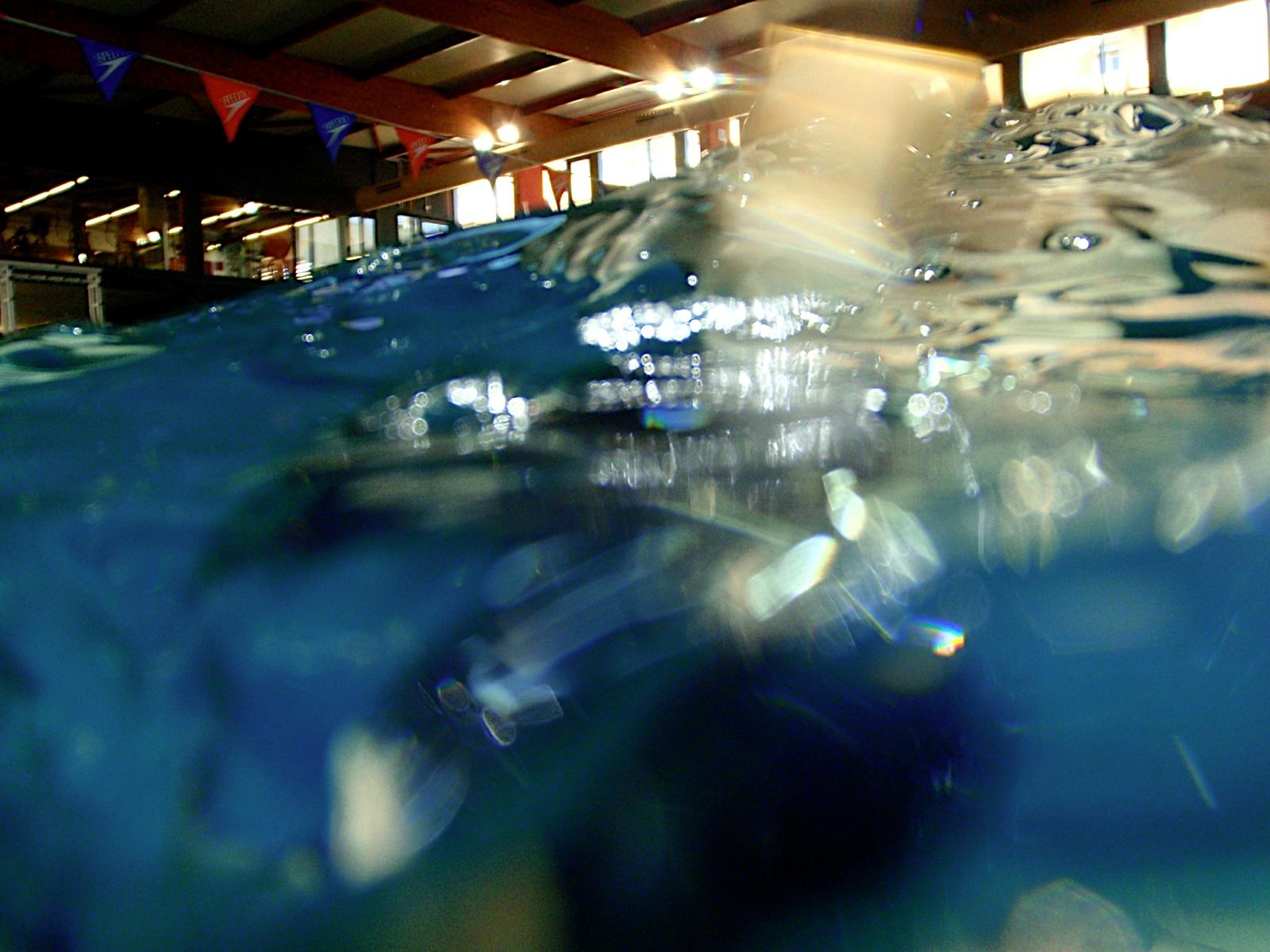 Monogràfic Marí 2010 - P5290252.JPG