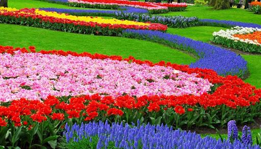 Splendid Garden designs