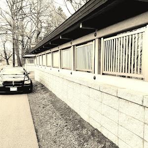 マグナム  SEのカスタム事例画像 shu(Team′s Lowgun北海道)さんの2019年04月11日15:32の投稿