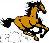 horse-7.jpg