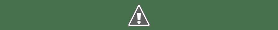 Biblioteca INS La Guineueta