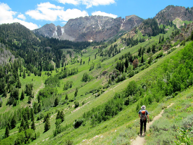 View up Dry Lake Fork to Deseret Peak