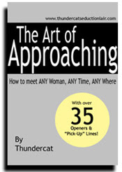 Cover of Thundercat's Book The Art Of Approaching 2nd Edition
