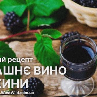 Домашнє вино із ожини — класичний рецепт