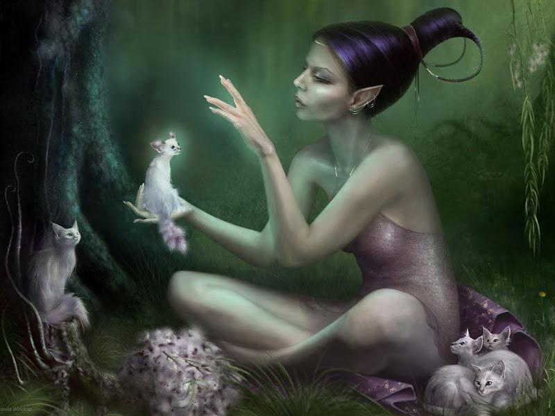 Elf Cats, Elven Girls