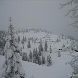 A Velika planina 17.1.2010