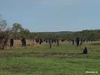 Aboriginie Friedhof....nicht :D