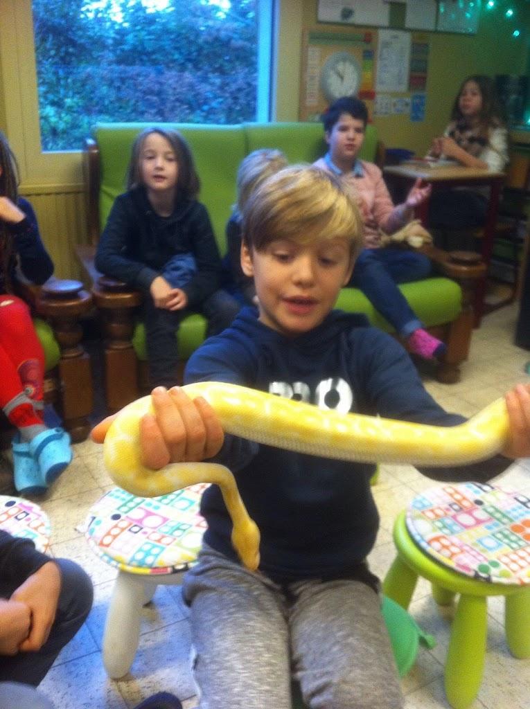 Slangen op bezoek bij de Kikkers - IMG_9226.JPG