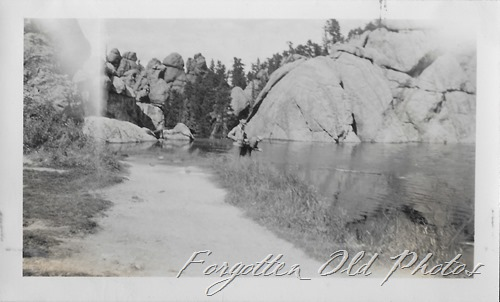 Sylvan Lake Dl ant