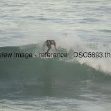 _DSC5893.thumb.jpg