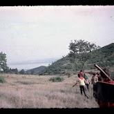 dia062-011-1968-tabor-szigliget.jpg