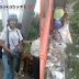 Tumpukan Sampah di Jembatan, Warga Bersama Paguris, Puteri Nelayan Palabuhanratu, Disperkimsih dan Gibas Turun