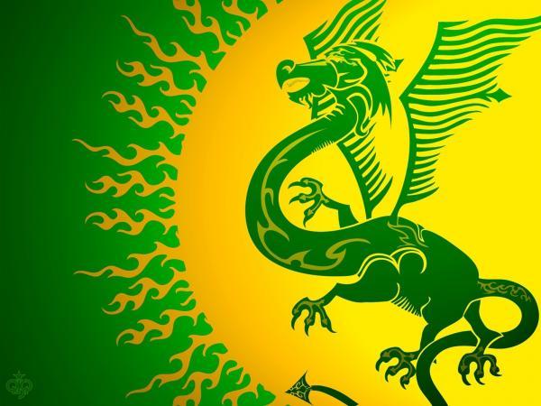 Dragon Background Green, Dragons