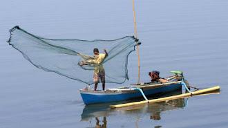 Komisi IV DPR  Minta KKP Evaluasi Kegiatan Prioritas 2021, Tapi Utamakan Pendampingan dan Perbanyak Bimtek Nelayan