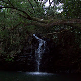 Hawaii Day 5 - 100_7331.JPG