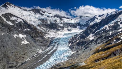 Dart Glacier, Mount Aspiring National Park, New Zealand.jpg