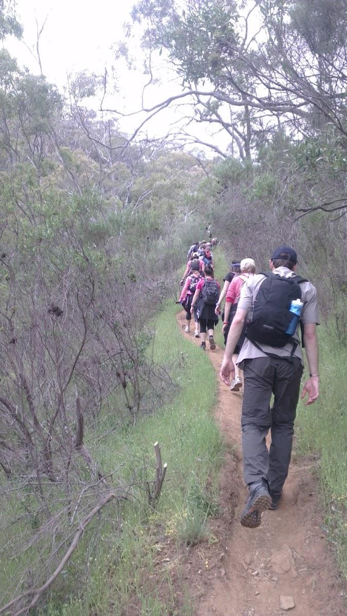 Adelaide Trailblazer 50km