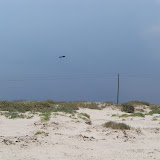 Surfside 2011 - 100_9490.JPG