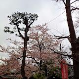 2014 Japan - Dag 5 - tom-SAM_0420-0025.JPG