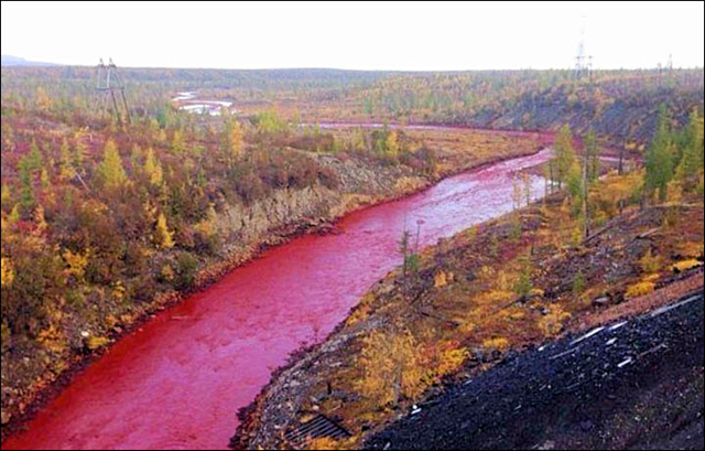 The water of the Daldykan River in Siberia runs red with pollution from the Nadezhda Metallurgical Plant, 7 September 2016. Photo: Vkontakte / Siberian Times