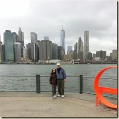 20151028_East River Manhattan us (Small)