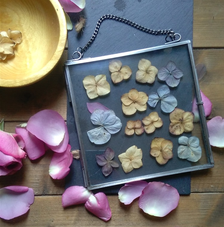 preserving dried petals