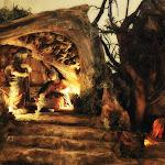 1492-3.jpg