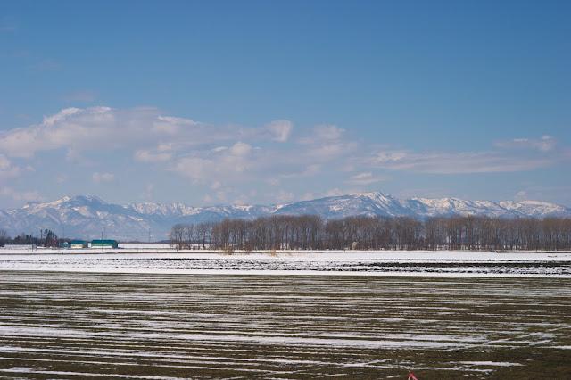 北海道の春