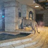 Downtown Aquarium - 116_3973.JPG