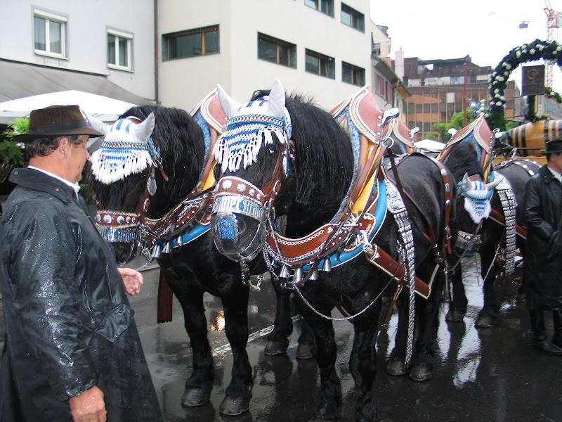 KORNMESSER GARTENERÖFFNUNG MIT AUGUSTINER 2009 015.JPG