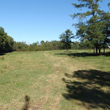 19 Oct 2008 - View of trail ride at Anderson Creek Hunting Preserve