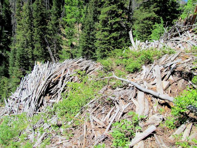 Huge pile of scrap lumber