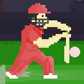 Pixel Cricket Game