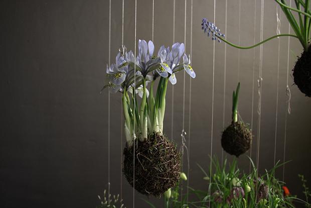Fedor Van der Valk's String Gardens