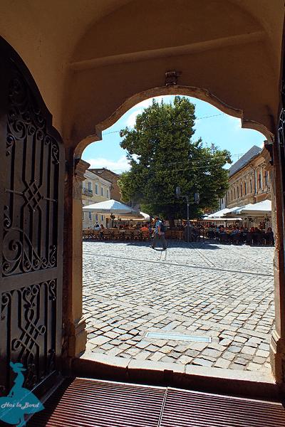 piata muzeului vedere biserica franciscana cluj