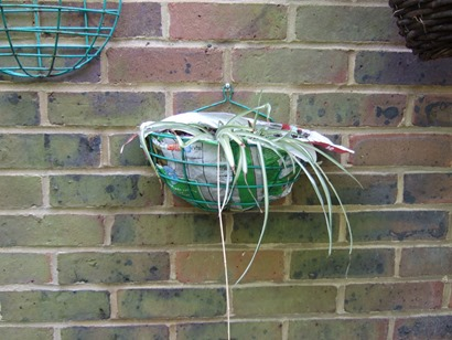 Wall_hanging_basket_lined_with_frozen_food_bag1