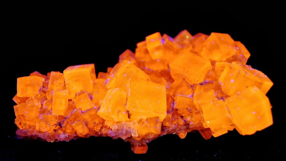 Colección de Minerales Fluorescentes - Página 3 Halite%252CUVc