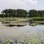 20150613_Fishing_Virlia_028.jpg