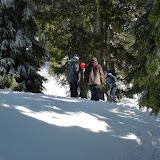 Winter Survival - CIMG1338.JPG
