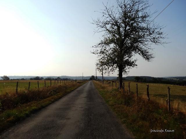 Passeando pela Suíça - 2012 - Página 26 DSC03183