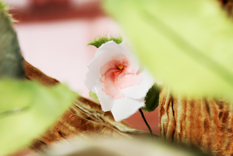 Дерево и цветок / A tree and a flower