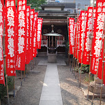 shrine in asakusa in Asakusa, Tokyo, Japan