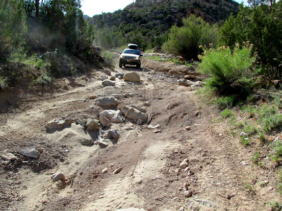 Former road in Turtle Canyon (photo by Alan Peterson)