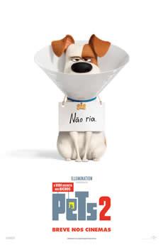 Baixar Filme Pets: A Vida Secreta dos Bichos 2 Torrent Grátis