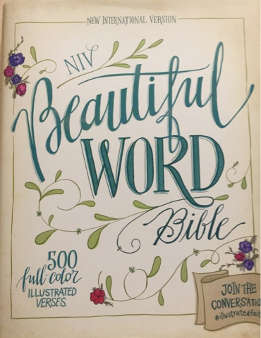 Running through the Storms: NIV Beautiful Word Bible