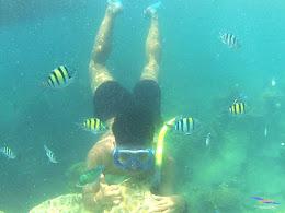 pulau harapan, 5-6 september 2015 skc 046
