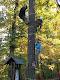 Obrázek: Den stromů 2012 017.jpg